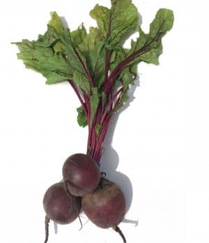 A bunch of beetroot with fresh green leaves