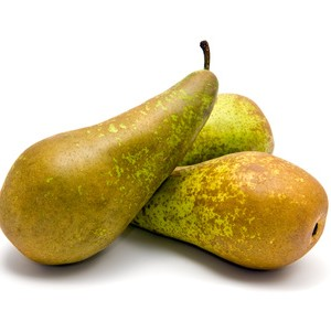 Three Conference Pears with green and brown skins