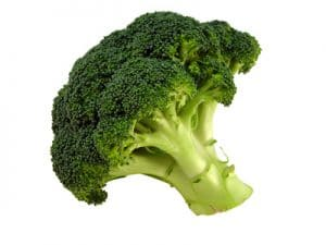 A head of green Broccoli