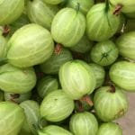 A punnet of Gooseberries