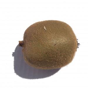 A single Kiwi