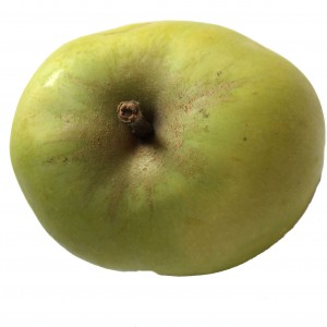 Green Round Apple