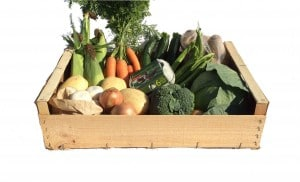 large box containing fresh vegetables and eggs
