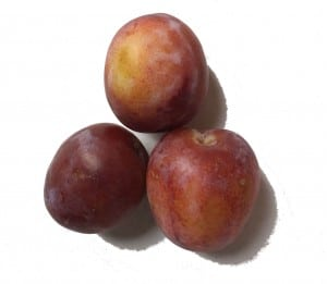 three opal plums with red and green colourings