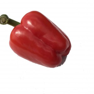Red Pepper with Green stalk