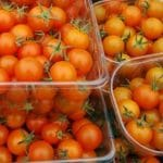 Small Orange Tomatoes