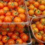 Small Orange Tomatoes