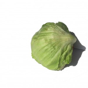 A round lettuce
