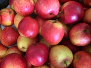 a selection of red apples