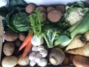 Top View of all the vegetables contained in the box