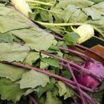 A photo of Kohlrabi in a cardboard box. There are two types shown, green and purple